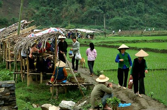 Market set on a dyke amongst rice fields near Ba Be Lake. Northeast Vietnam